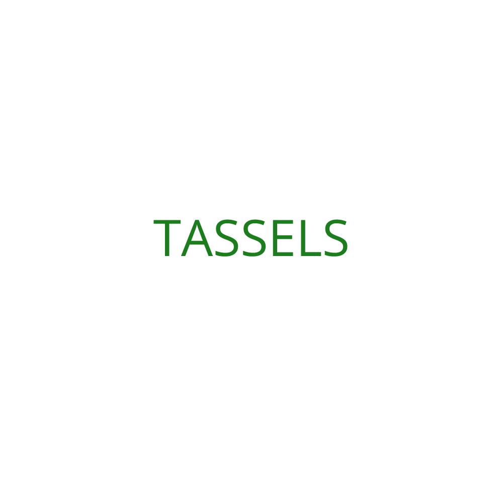 2019 Tassels